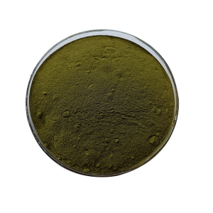 Best Bulk Wheatgrass Powder Supplier
